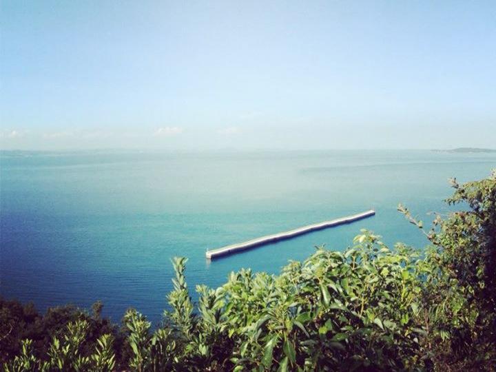 瀬戸内の海原