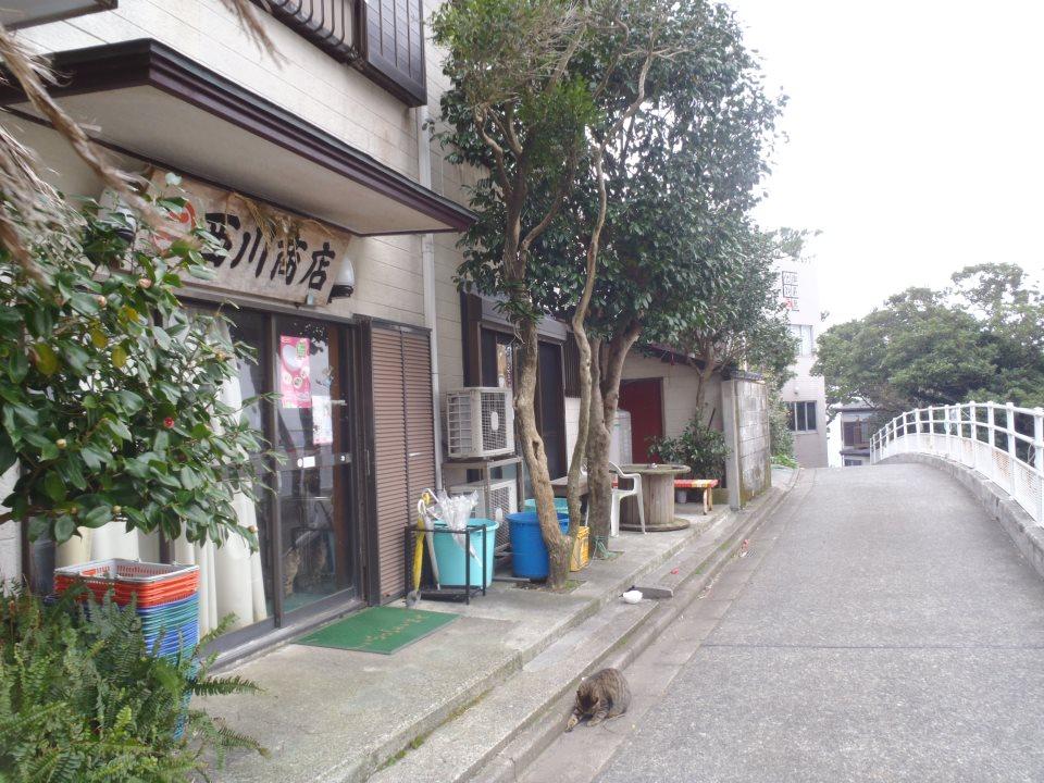 御蔵島 西川商店