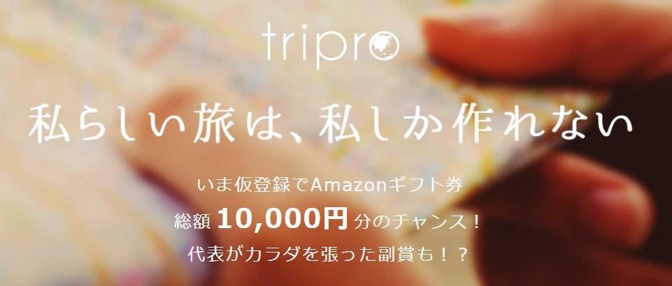 tripro仮登録