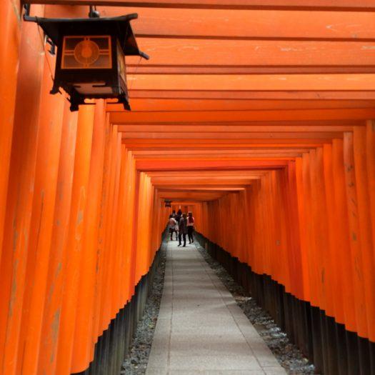 伏見稲荷大社の「千本鳥居」で、赤の世界の神秘を体験。そして実際の本数は?