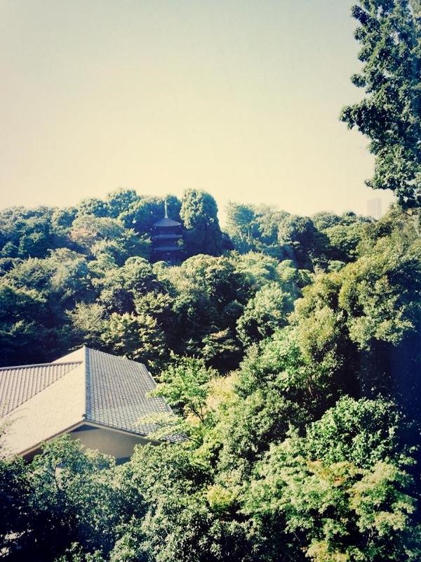 イルテアトロ窓からの景観