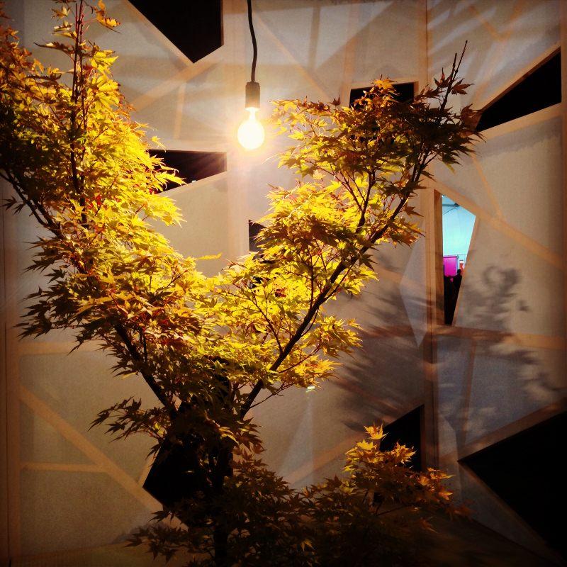 東京デザイナーズウィーク2013 野外インスタレーション