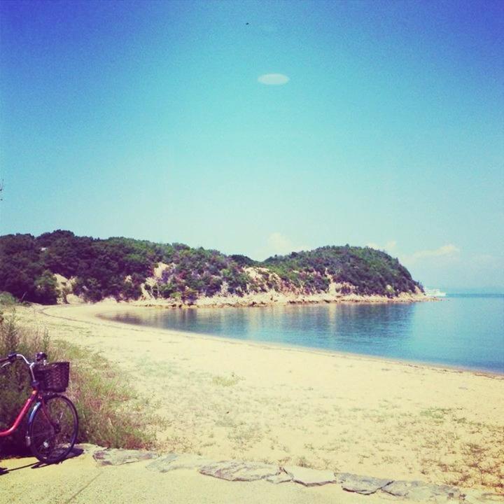夏の海と空