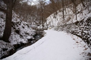 軽井沢白糸の滝への道