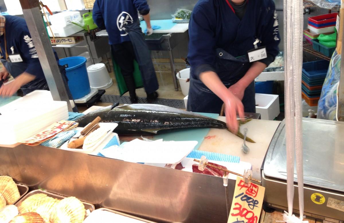 【練馬・旬】水族館より行くべき場所かもしれない魚市場