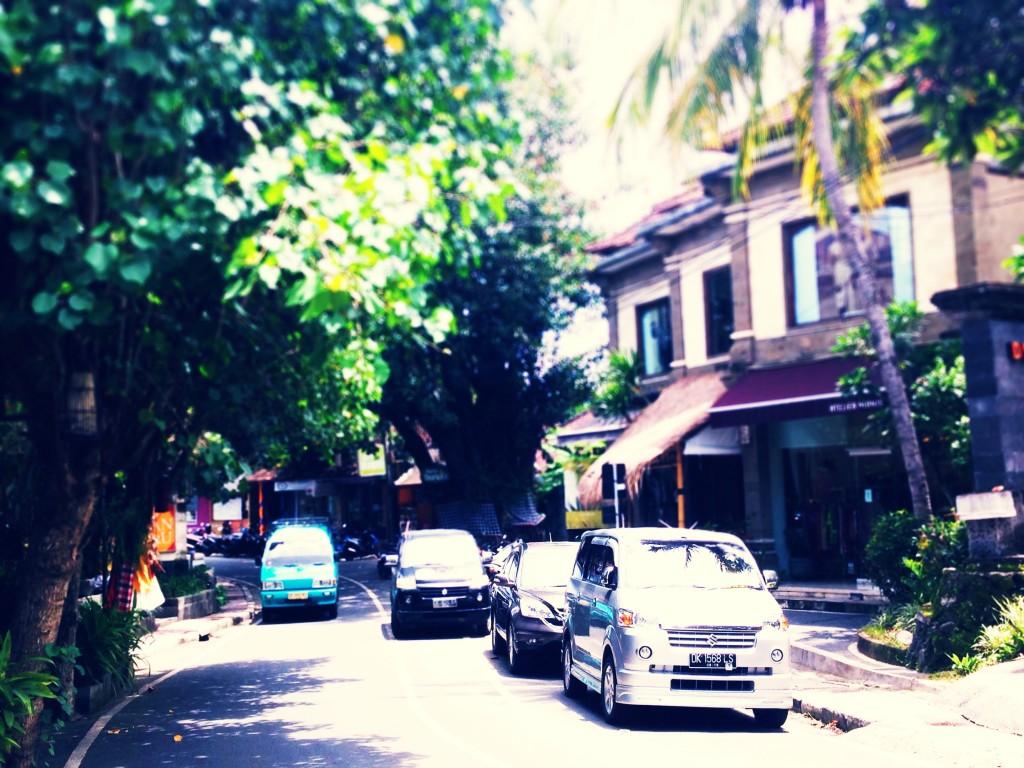 【ウブド】バリ島好きがいく、芸術と森の街を観光する。