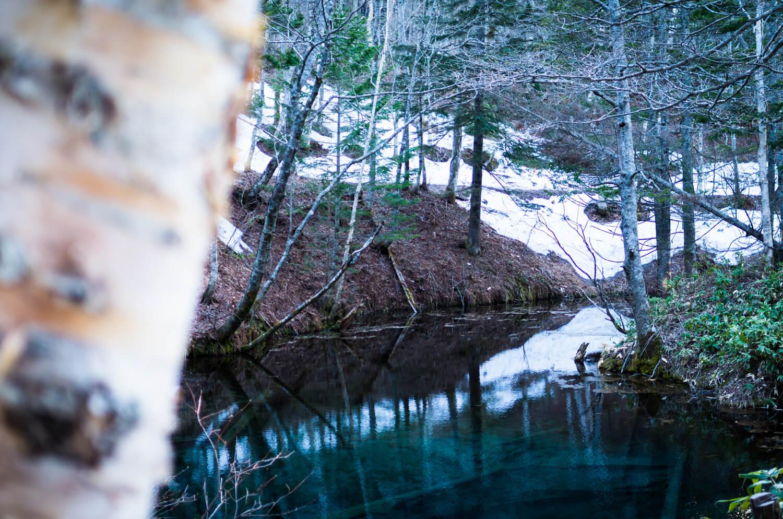 神の子池と残雪