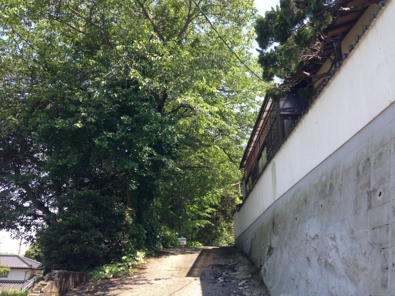 出雲大社福岡分院への坂道