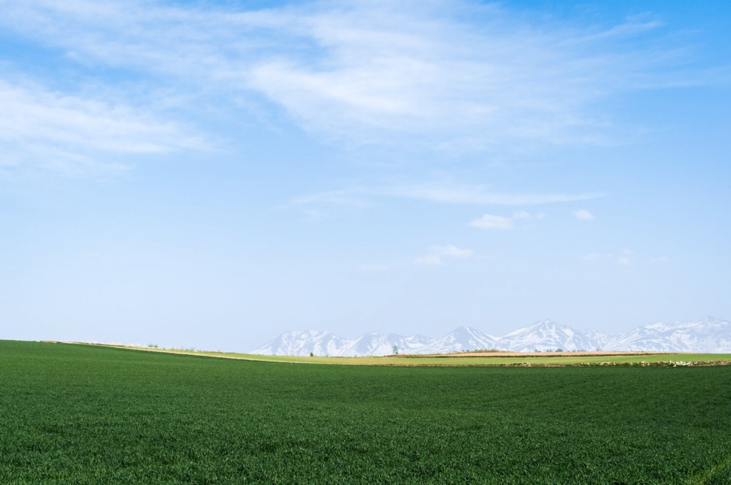 美瑛と大雪山系