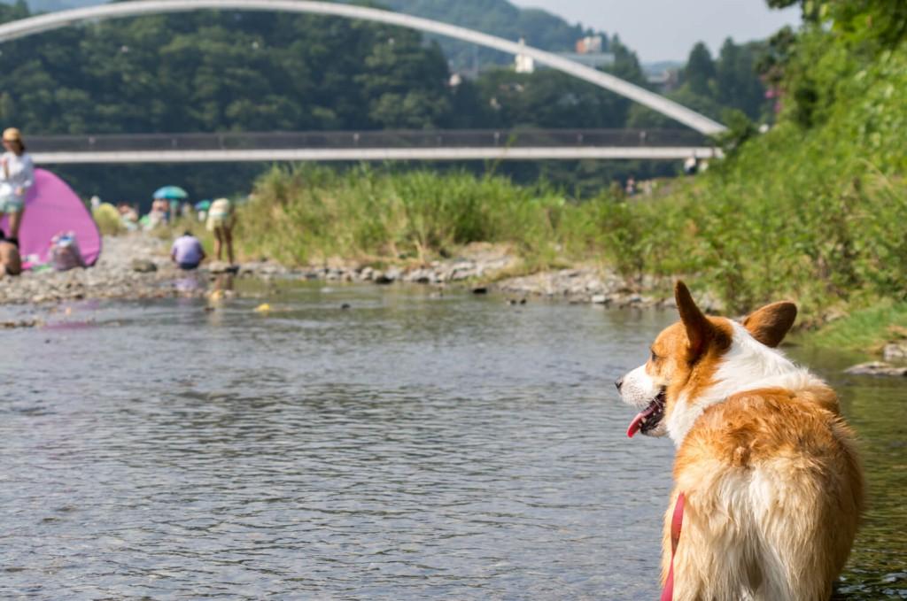 川遊び&BBQ!都心から近い「秋川渓谷」がオススメです
