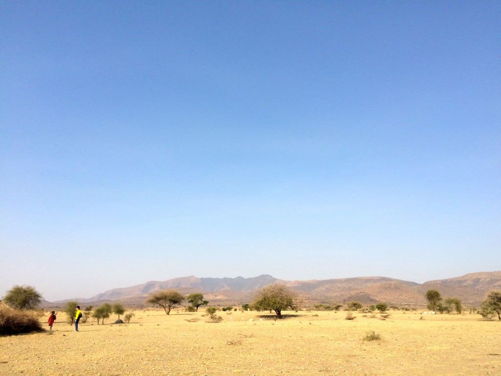 masaiarea
