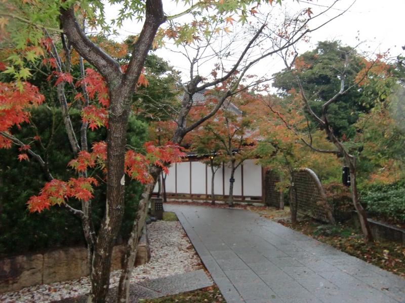 小倉城庭園2