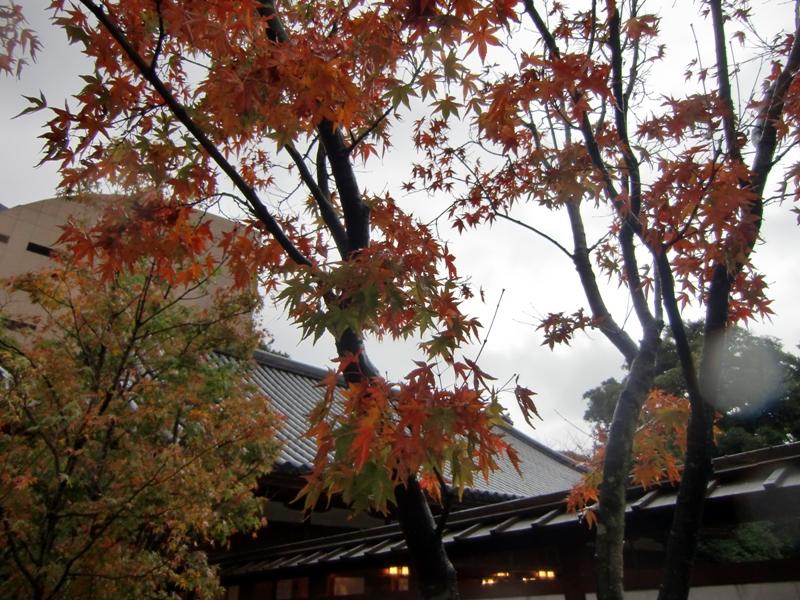 小倉城庭園7