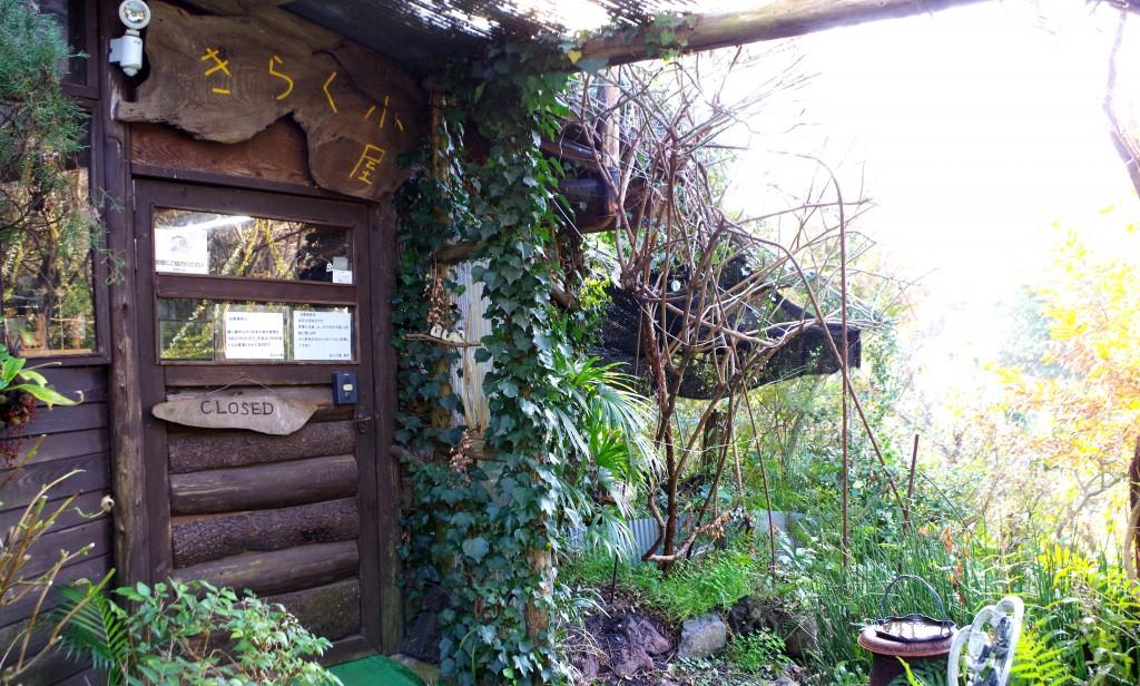 伊豆大島のカフェ・きらく小屋。木に囲まれた癒しの場所