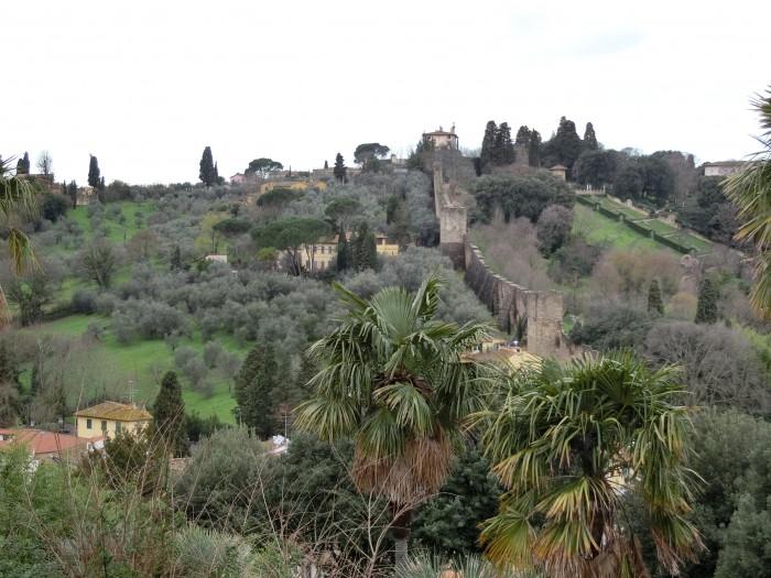 城壁とオリーブの木
