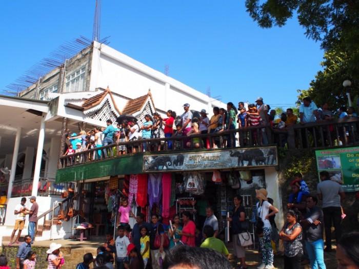 屋根の上にも見物客がいっぱい