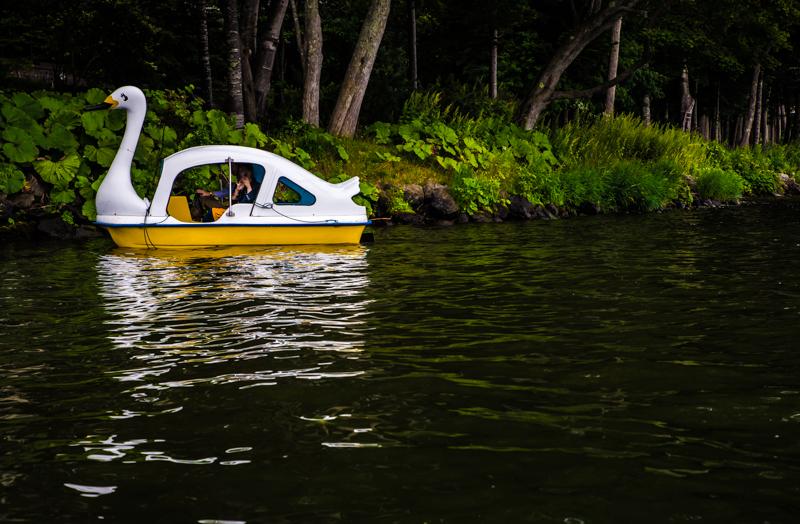 アヒルボート