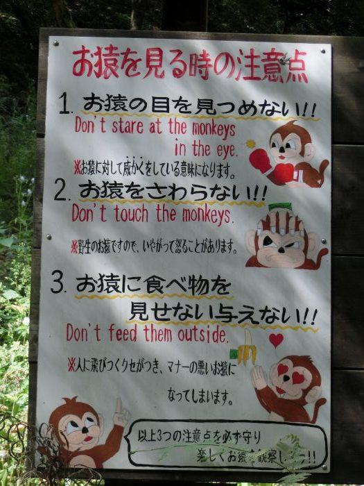 嵐山 観光