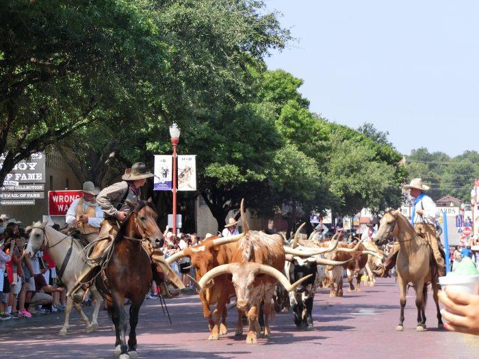 テキサス 観光