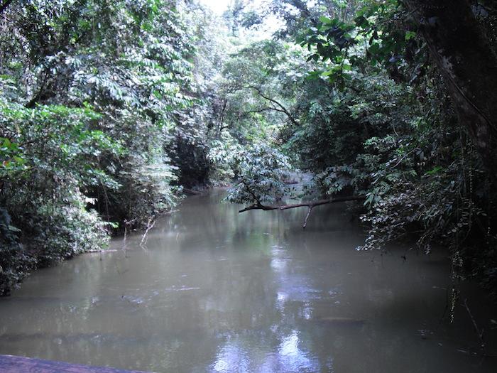 グヌンムル国立公園