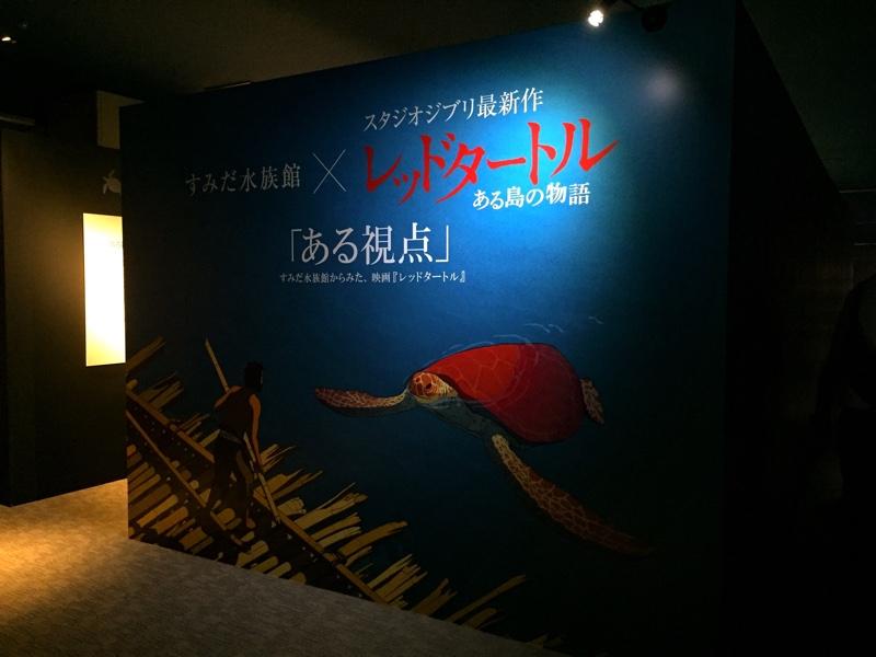 すみだ水族館「レッドタートル」コラボ展示