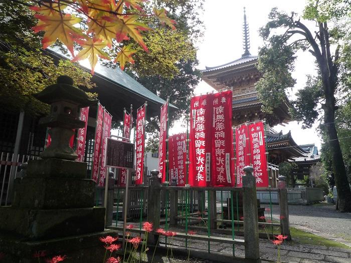 ■24【野火止モミジ狩り-179 円福寺薬師堂モミジ】 P1050579