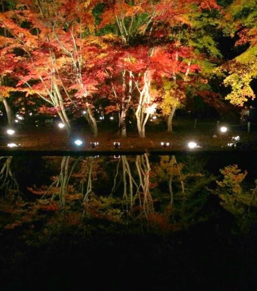 曽木公園のメイン、逆さもみじです。