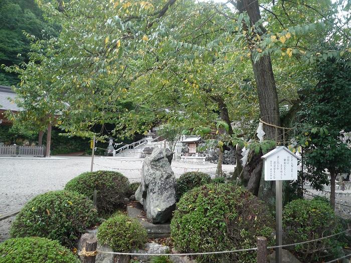 ●25 【高麗神社-23】●(700px) P1040472