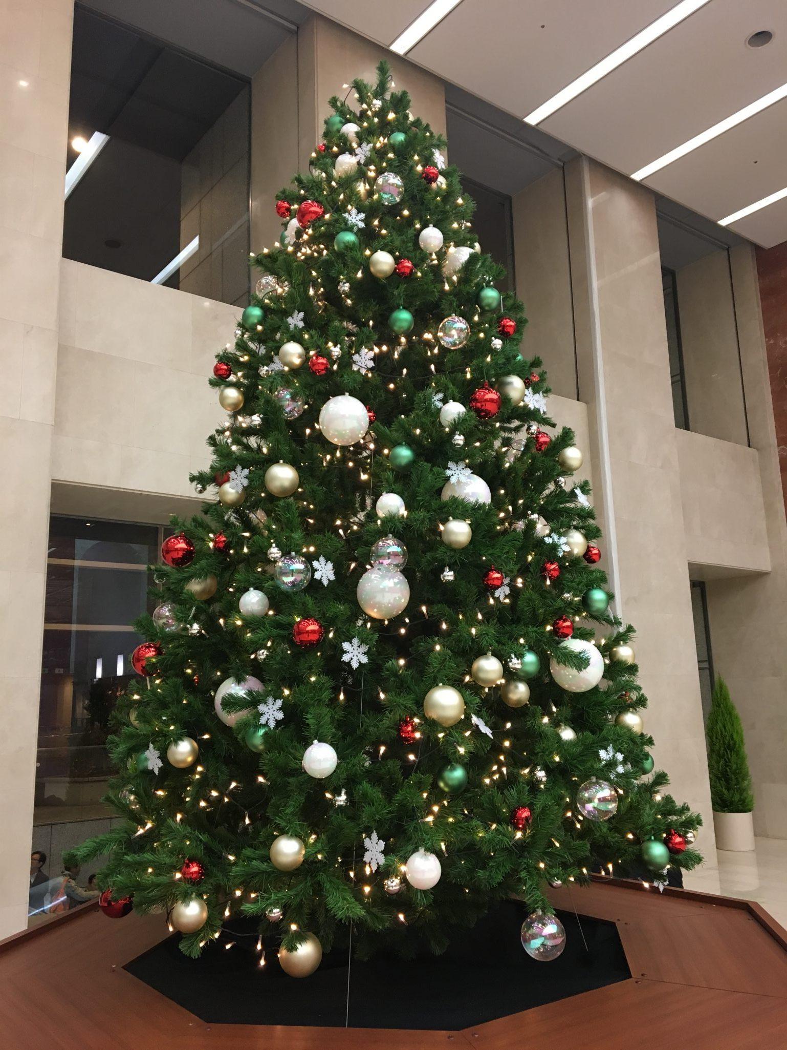 こんなところにもクリスマスツリーが!