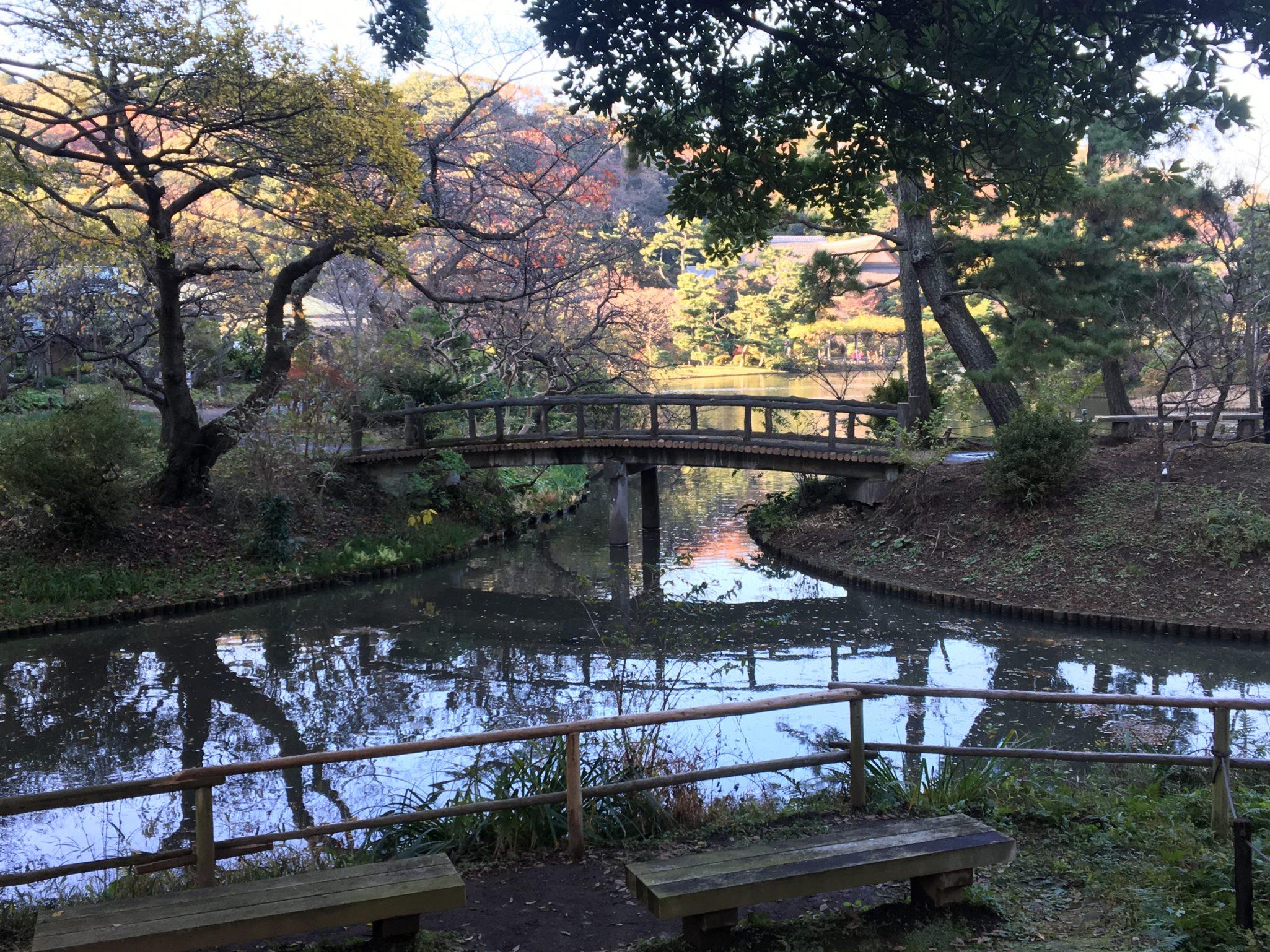 「三渓園」で自然と対話をしよう!