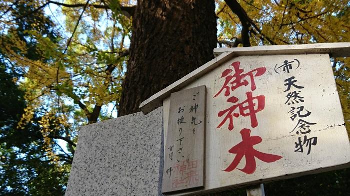 ●32【田無神社-154】●(700px) DSC_0211