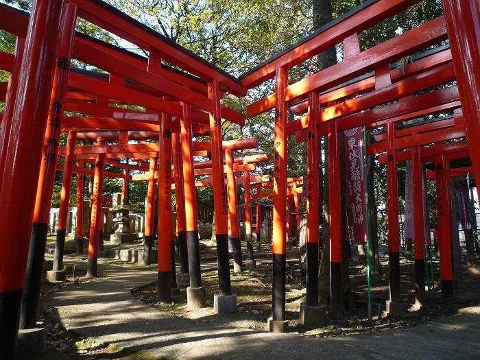 東にあるから「東伏見稲荷神社」。ぜんぜん綺麗に並んでない、その赤鳥居とは…?