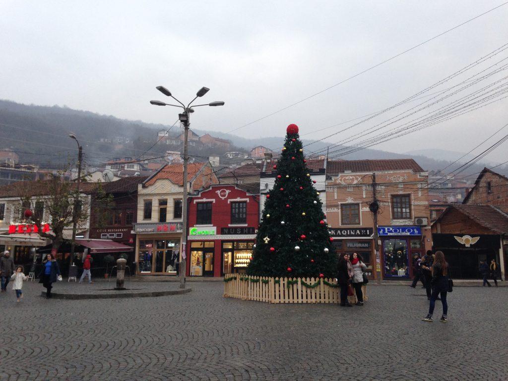 kosovo tree