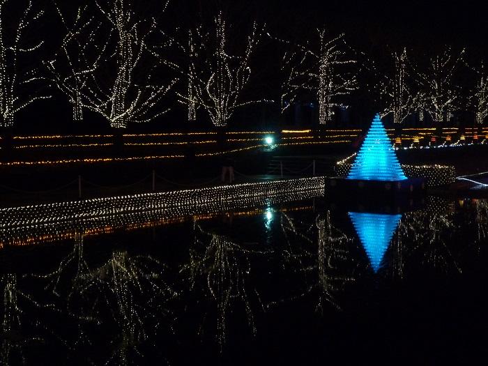 ●5【昭和記念公園イルミ-35】●(700px) P1110827