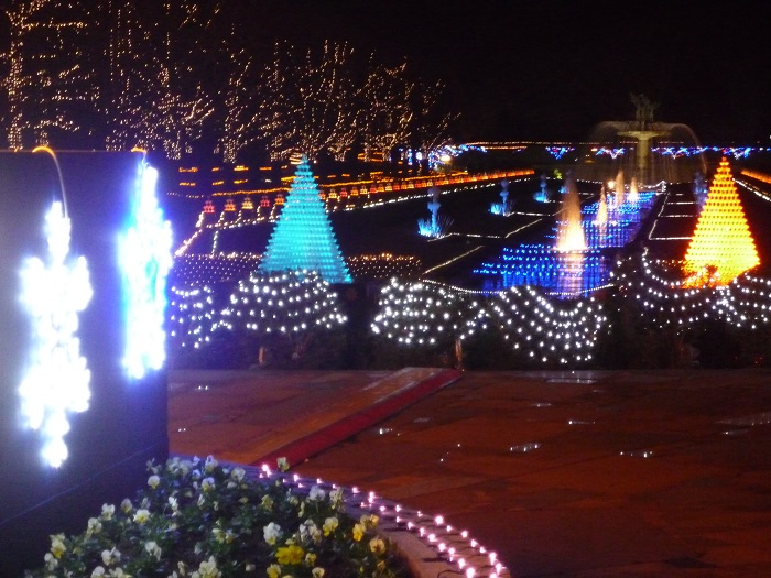 ●26【昭和記念公園イルミ-455】●(700px) P1120253