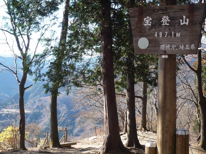 ●23【宝登山ロープウエイ-224】●(700px) P1120788
