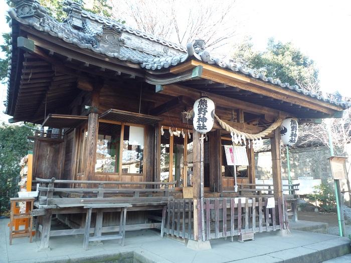●10【川越熊野神社-4】●(700px) P1120938