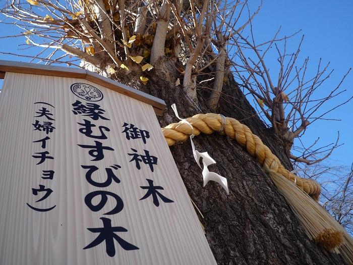 ●16【川越八幡宮-23】●(700px) P1130002