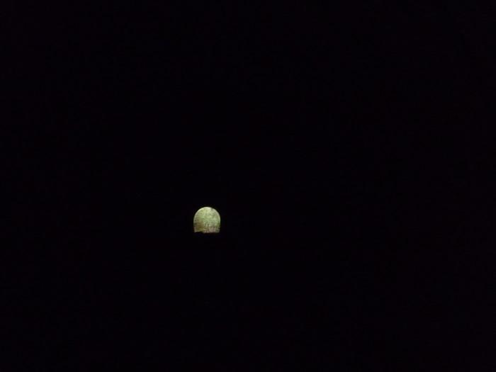 ●43【多摩湖ポタリング-189】●(700px) P1120494
