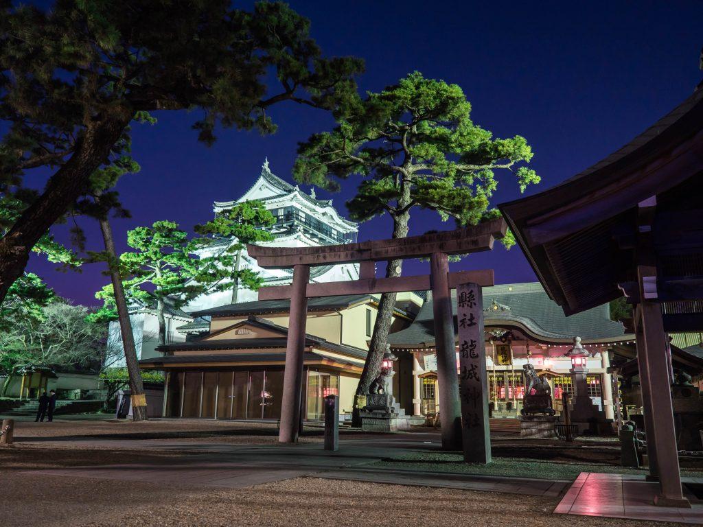 岡崎_イルミ_神社