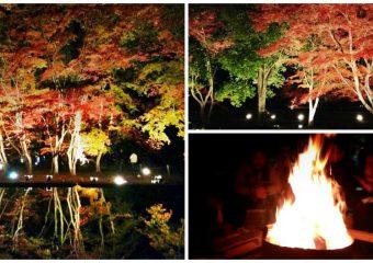 曽木公園 紅葉