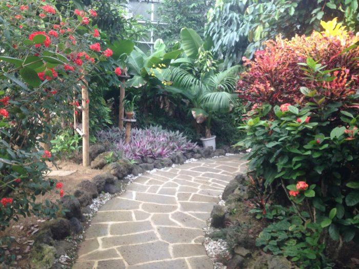 八丈島植物園