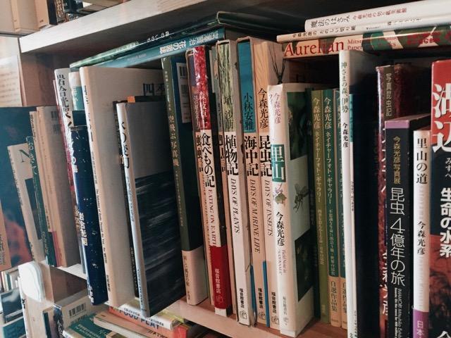 めぐたま本棚自然系