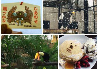 円山動物園三が日