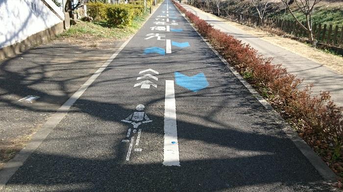 ●1最初+49【多摩湖自転車道③-14】●(700px) DSC_0973