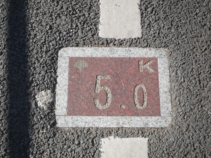 ●31【多摩湖自転車道②-85】●(700px) P1150128