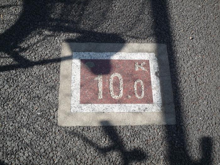 ●56【多摩湖自転車道②-11】●(700px) P1150086