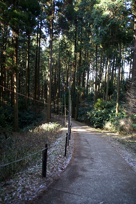 古関の滝18