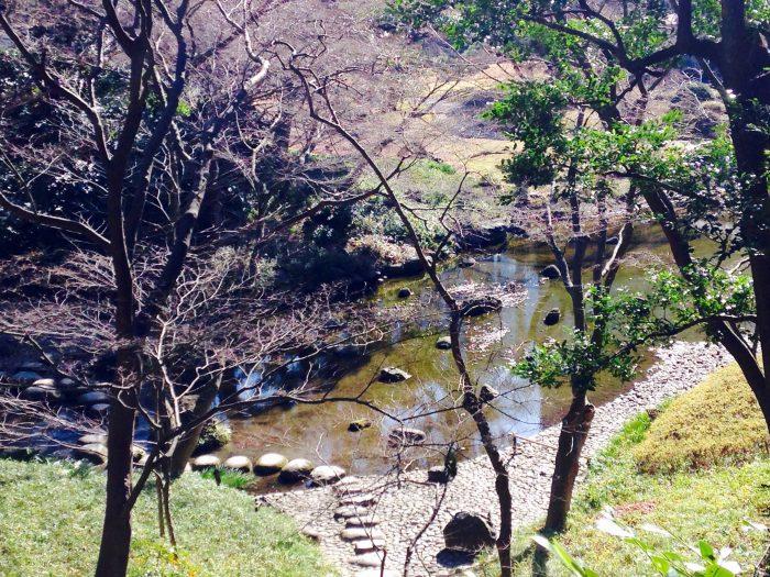 高台から望む岩の景観美