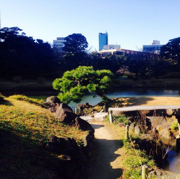 都会の風景とのハーモニー